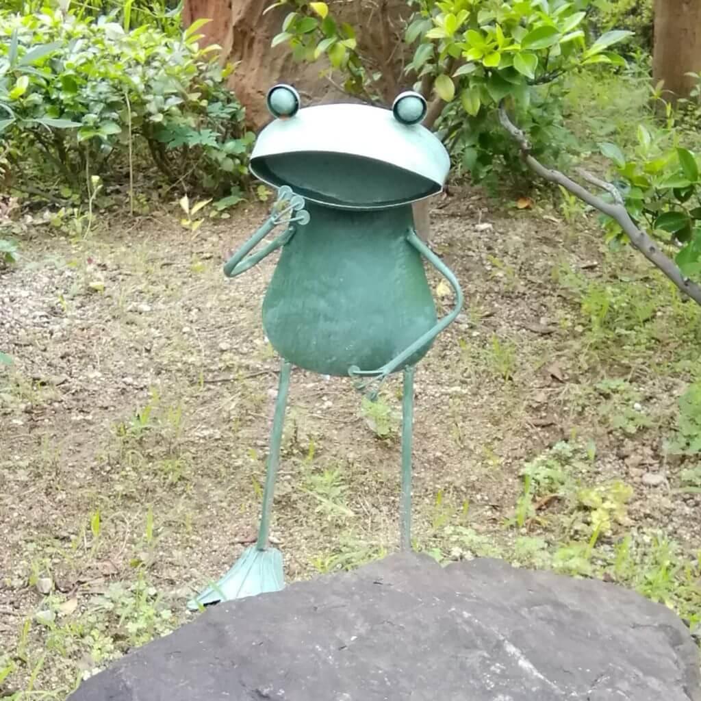 庭のカエル像1